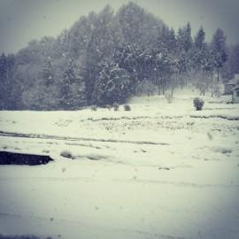 20150115_雪